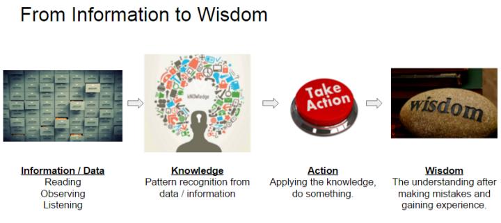 information to wisdom